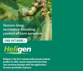 Got worms? 3 Reasons You Should Use Heligen through MKC